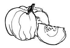 Croquis de potiron mûr sur le fond blanc illustration libre de droits