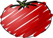 Croquis de tomate Photos stock