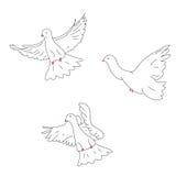 Croquis de trois colombes Photo stock