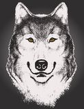 Croquis de vecteur d'un visage de loup Image stock