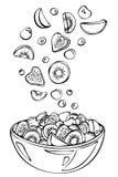 Croquis de vecteur de salade de fruits d'été Photographie stock