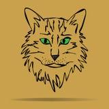 Croquis de vecteur du visage d'un chaton stylisé Image stock