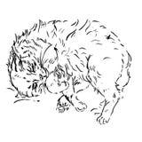 Croquis des chats dans différentes poses griffonnages illustration stock