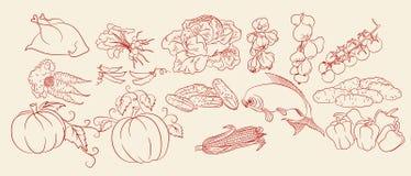 Croquis des légumes, du poulet et des poissons Image stock