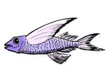 Croquis des poissons de vol Photos libres de droits