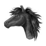 Croquis noir de cheval de jument pour la conception de monte de club Images stock