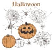 Croquis réglé de potiron de Halloween Image stock