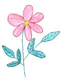Croquis rose de fleur Photos stock