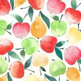 Croquis sans couture juteux d'aquarelle de modèle de pommes et de poires Images libres de droits