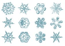 Croquis tiré par la main de vecteur d'illustration de flocons de neige sur le fond blanc illustration libre de droits
