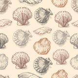 Croquis tiré par la main gravure à l'eau-forte de graphique de vecteur de coquillages, modèle sans couture, ornement marin artist Photographie stock libre de droits