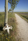 Cross against tree. A cross against a tree next to a footpath Royalty Free Stock Photo