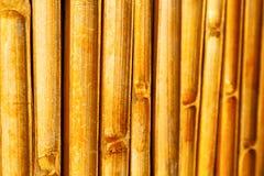 Cross bamboo  kho phangan bay   and south Stock Photo