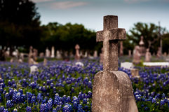Cross Among Bluebonnets Stock Photo