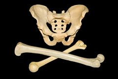 Cross-Bones Royalty Free Stock Photography