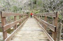 Cross the bridge Royalty Free Stock Photo
