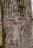 Cross carved in the bark of a tree Royalty Free Stock Images
