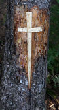 Cross Carved in a Tree Stock Photo