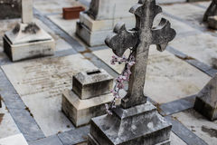 Cross on cemetery Stock Images