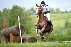 Cross-country. Сarrying  horse with a sudden stop Royalty Free Stock Photography