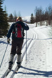 Cross country. Skiing woman in norway,cross country Stock Photo