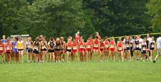 Cross country competition Royalty Free Stock Images
