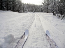 Cross-country fun. Picture of cross-country skis in Kananaskis,Alberta,Canada Stock Photo