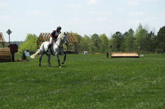 Cross Country Horse Sh0w 2. A horse and rider competing in an event Stock Photo