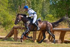 Cross-Country, horseback gallop Stock Photos