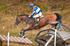 Cross-Country, horseback jumping Stock Images