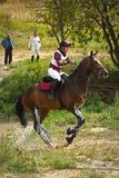 Cross-Country, horseback jumping in splashes water Stock Image