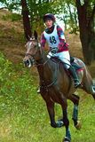 Cross-Country, horseback woman gallop Royalty Free Stock Images
