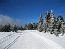 Cross Country-Landschaft Lizenzfreie Stockfotos