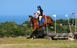Cross country rider and horse Stock Photo