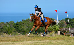Cross country rider and horse Stock Photos