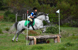 Cross country rider and pony jumping. A female Caucasian preteen rider jumping a bank with her gray Welsh pony on a cross country course Stock Photo