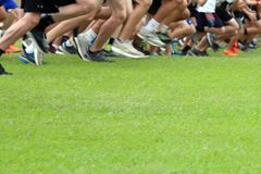 Cross Country Runners on green grass royalty free stock photos