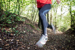 Cross country running. Male trail runner running in the forest on a trail.Close-up on running shoes. Summer season. Slight blur in runner to show motion Royalty Free Stock Images
