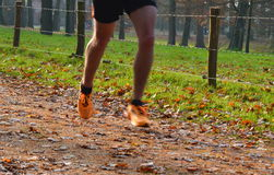 Cross country running blurred on trail. Cross country running shoes blurred in autumn / fall Royalty Free Stock Photos