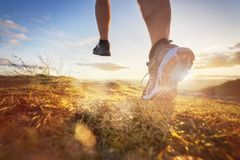 Cross-country running in early morning sunrise stock photography