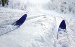 Cross Country Ski Stock Image