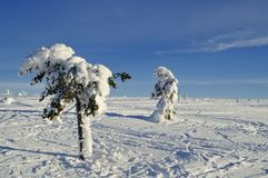Cross country ski hiking trail Stock Images