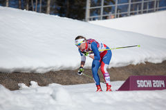 Cross-country ski Royalty Free Stock Photography