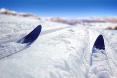 Cross Country Ski Stock Photography
