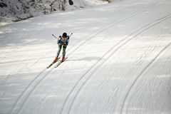 Cross country ski racer, snow Royalty Free Stock Image