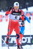 Cross country ski sprint - Paal Golberg Royalty Free Stock Photography