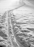 Cross country ski track Stock Photography