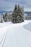 Cross-country ski track Stock Photos
