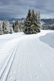Cross-country ski track Stock Photo