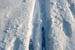 Cross country ski track Royalty Free Stock Photo